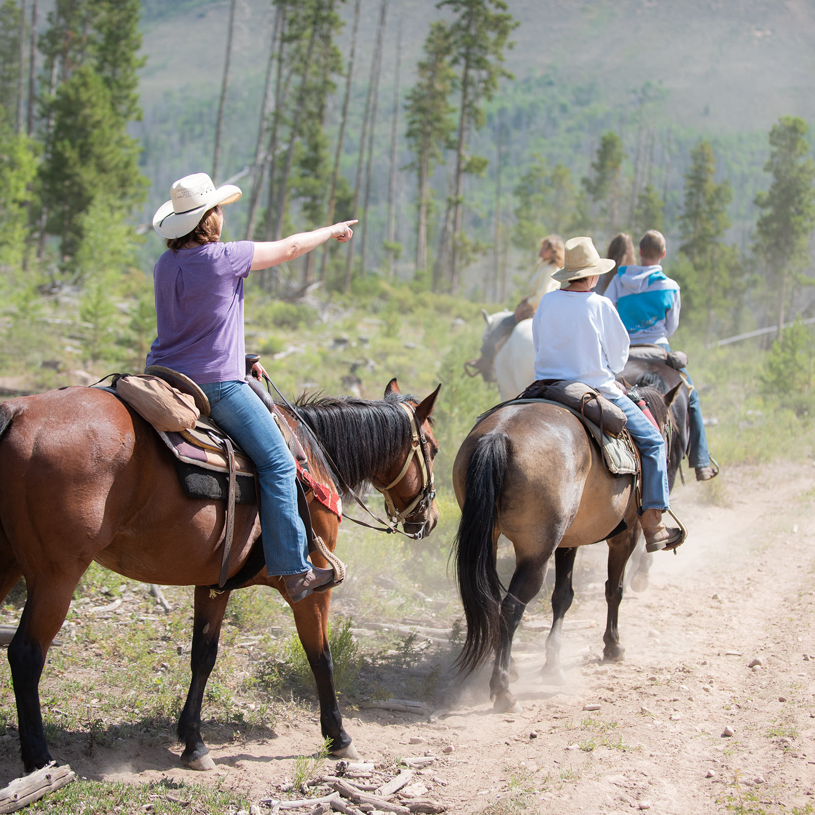 Scenic trail ride for the guests